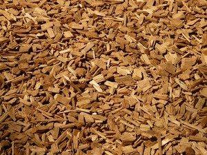 Onderzoek naar gebruik biomassa uit elzenhakhout