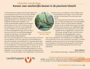 Kansen voor soortenrijke bossen in de provincie Utrecht